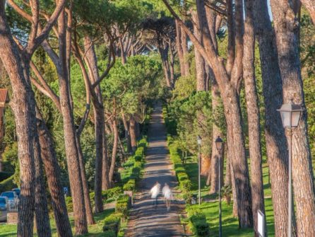 Ботанический сад в Риме